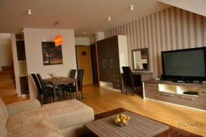 Apartman Zlatibor sa rentom